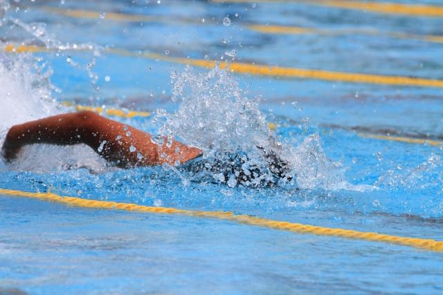 水泳の画像
