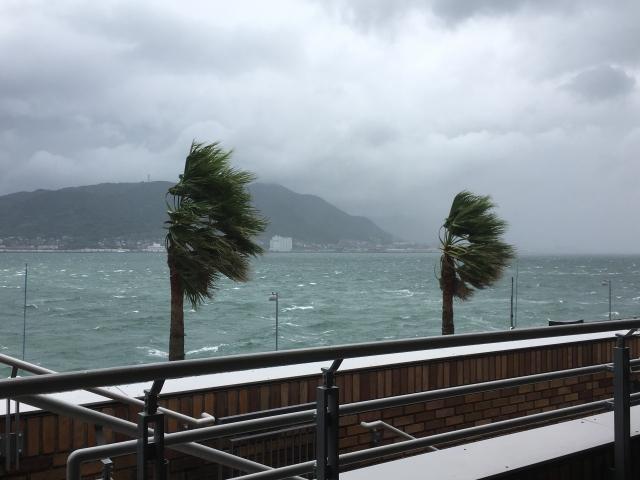 台風の海の画像